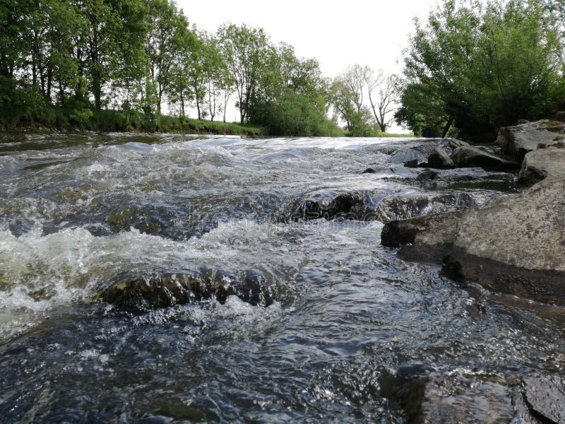 Fluss und Bäume stockfotografie