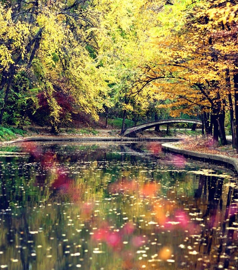 Fluss und herbstliche Bäume lizenzfreie stockfotos
