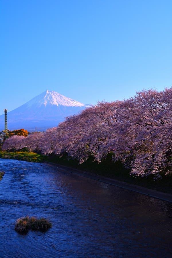 Fluss- und Kirschblüten und Mt Fuji in Fuji-Stadt Japan lizenzfreies stockfoto