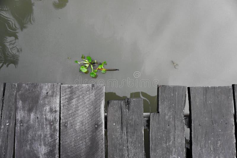 Fluss und Pier stockfotos