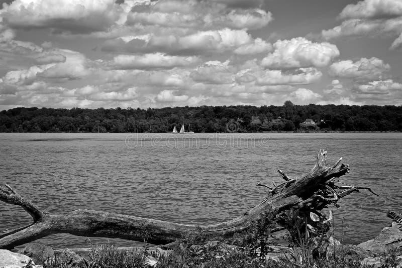 Fluss und Segelboote, Schwarzweiss lizenzfreies stockbild