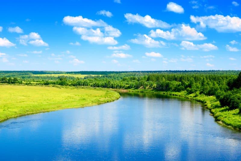 Fluss und Sommernatur lizenzfreies stockbild