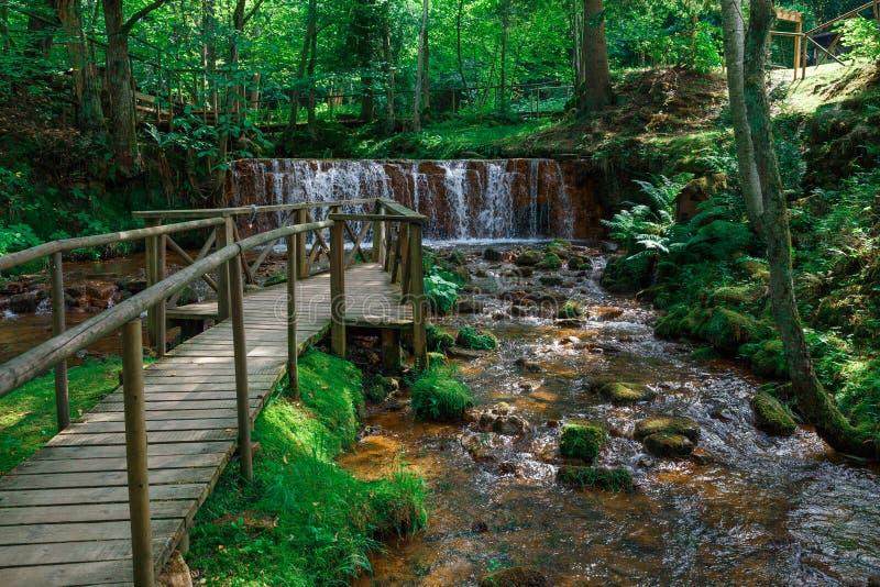 Fluss und Wasserfall, grüne Bäume und Gras Felsen und Wasserspritzen Naturfoto 2018 lizenzfreies stockfoto