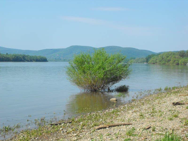 Fluss von Donau-Band stockfotos