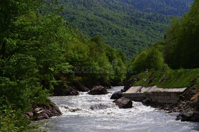 Fluss-Weiß lizenzfreies stockbild