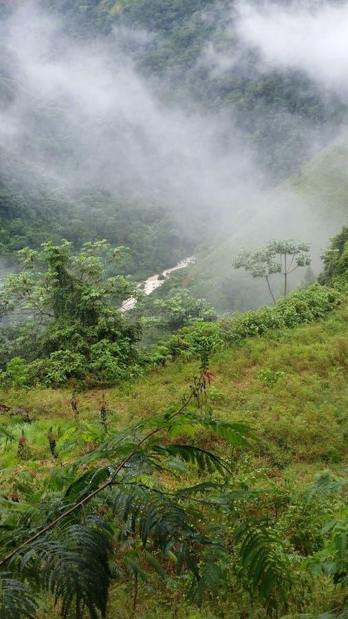 Fluss zwischen den Bergen stockbilder