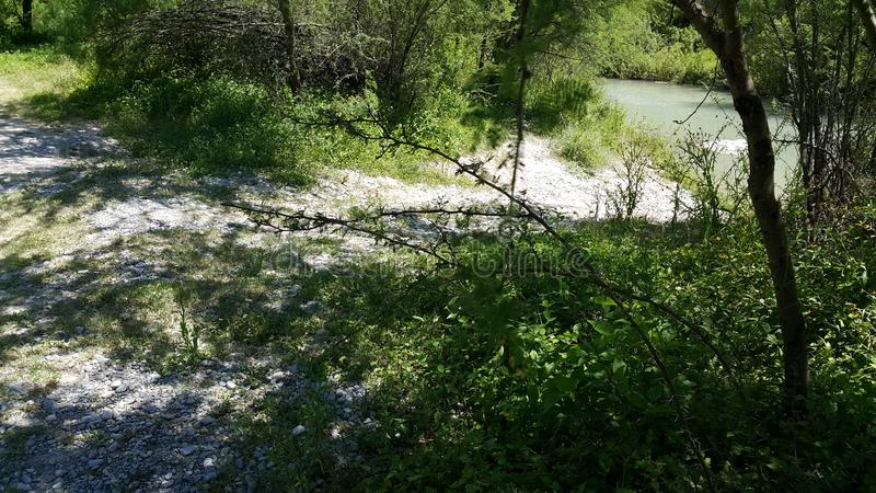 Flussanlagen stockfoto
