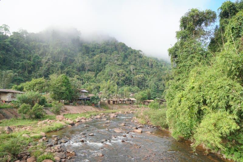 Flussansicht mitten in dem Wald mit dem Nebel, der oben schwimmt lizenzfreies stockfoto