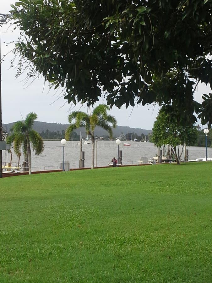 Flussansicht vom Park Innisfail Queensland lizenzfreie stockbilder