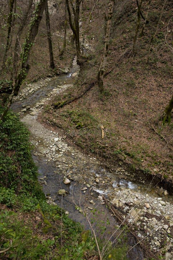 Flussbett des Gebirgsflusses im Kaukasus Russland Sochi lizenzfreies stockfoto