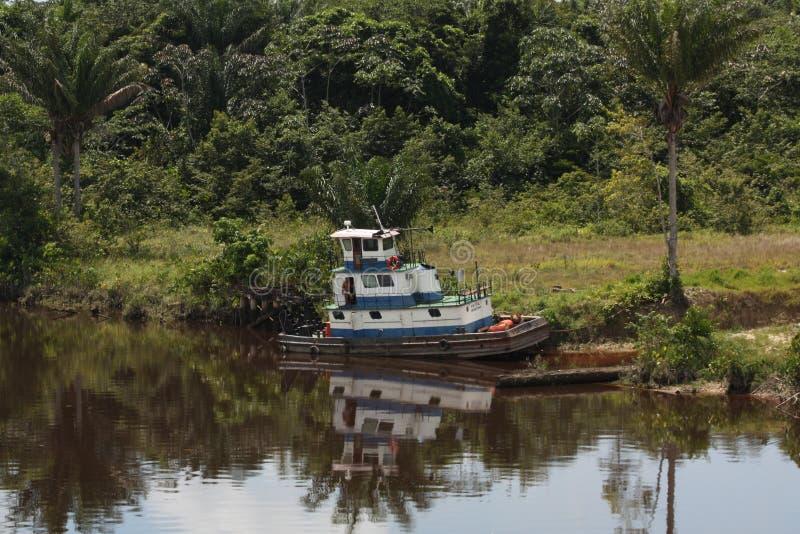 Flusshafen im Dschungel stockbilder