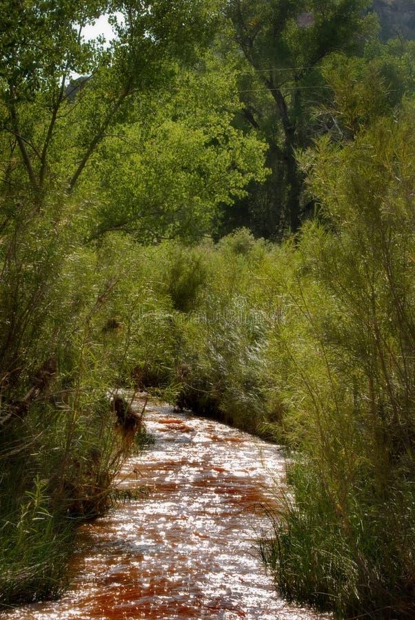 Flusso calmo in canyon di Duro di Palo fotografie stock