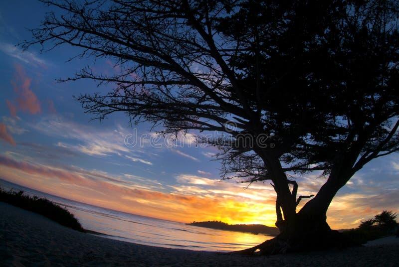 Flusso continuo del Carmel fotografia stock libera da diritti