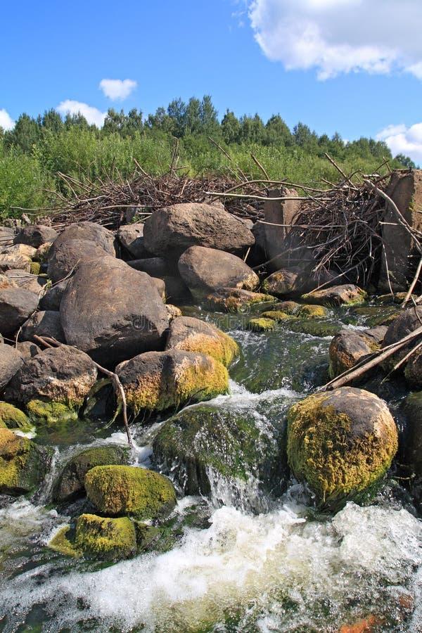 Flusso del fiume fotografia stock