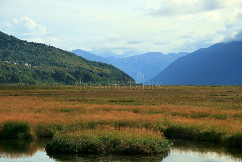Flusso dell'Alaska fotografia stock libera da diritti