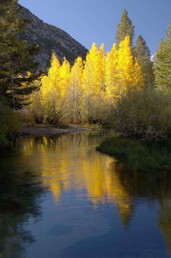 Flusso della montagna, colori di caduta fotografia stock libera da diritti