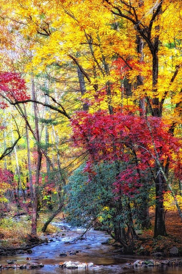 Flusso di autunno con le rocce muscose fotografie stock