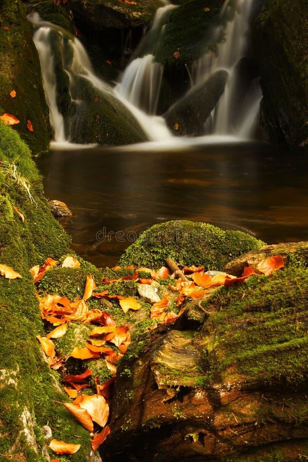 Flusso di autunno in montagne giganti immagine stock