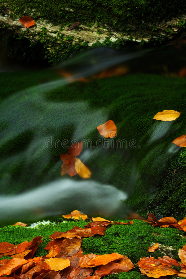 Flusso di autunno in montagne giganti immagini stock libere da diritti