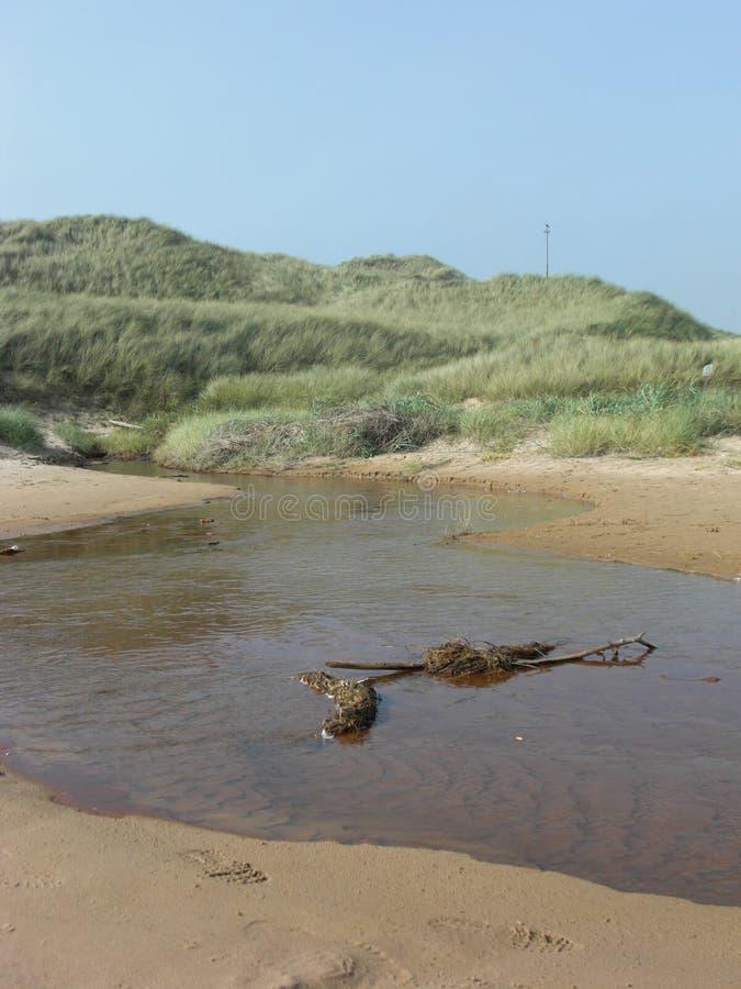 Flusso di solletico alla spiaggia ed al paesaggio della brughiera in Newburgh, Aberdeenshire fotografia stock libera da diritti