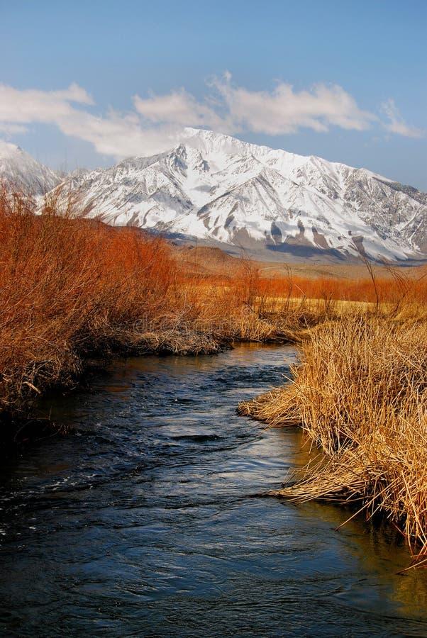 Flusso freddo della montagna fotografia stock