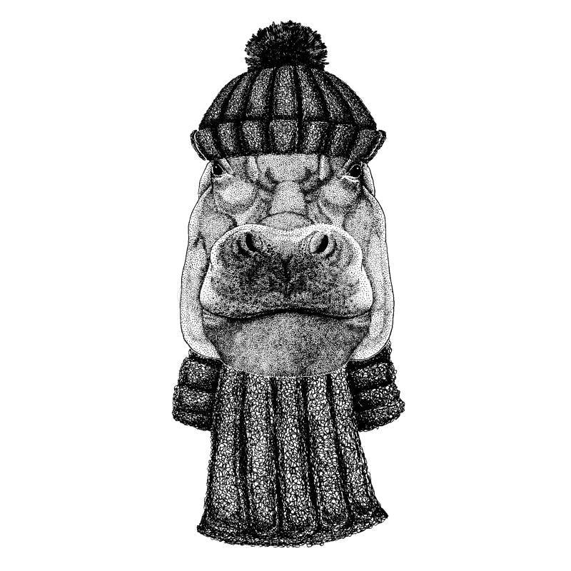 Flusspferd, Nilpferd, Ungetüm, Flusspferdekühles Tier, das gestrickten Winterhut trägt Warme Kopfschmuck Beanie Weihnachtskappe vektor abbildung
