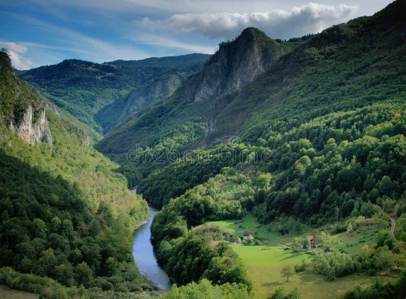 Flussschlucht in den Bergen stockfotos