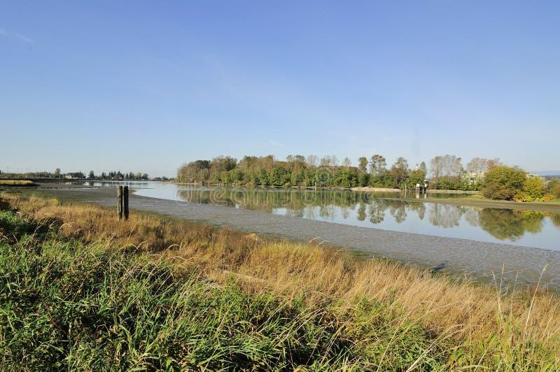Flussuferansicht in Herbst stockbild