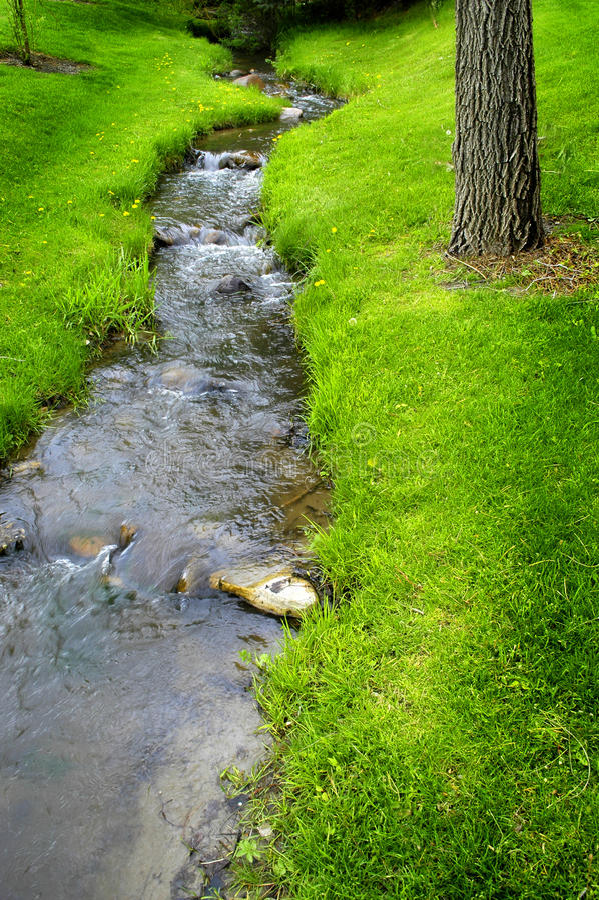 Flusswasser auf Felsen lizenzfreie stockfotos