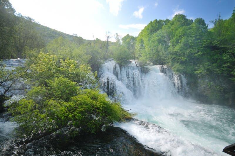 Flusswasserfall wild stockfoto