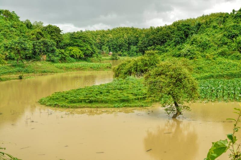 Flut in Bangladesch stockbilder