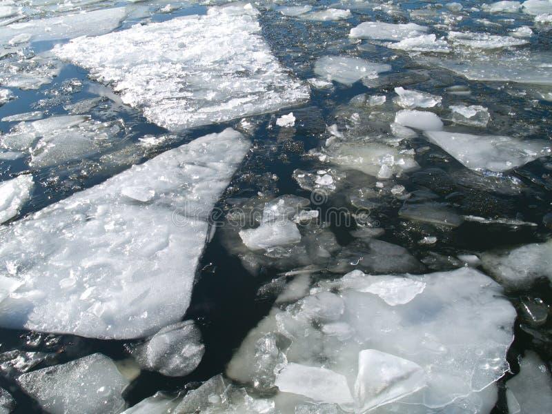 flutuação do gelo fotos de stock