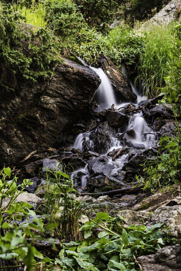 Flux d'eau du ruisseau Small photographie stock libre de droits