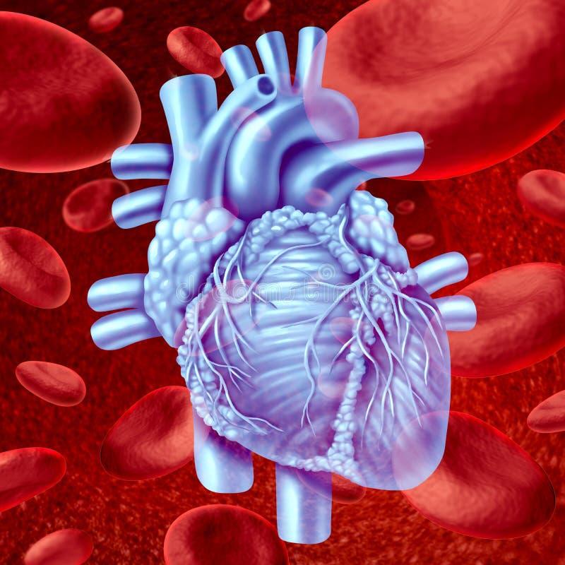 Flux de sang de coeur illustration libre de droits