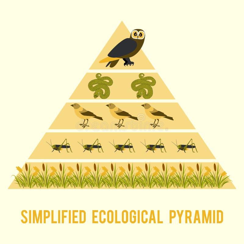 Fluxo de energia do ecossistema ilustração stock