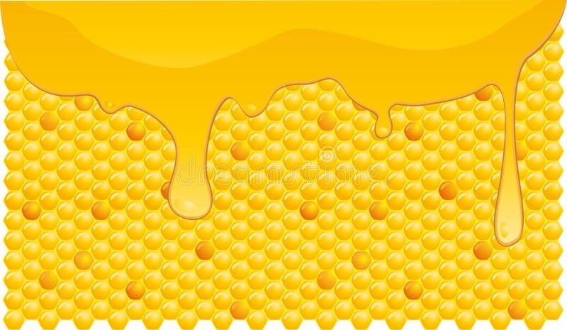 Fluxo do mel ilustração royalty free