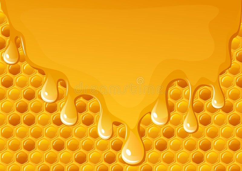 Fluxo do mel ilustração do vetor