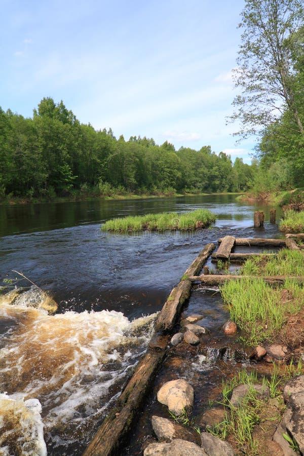 Download Fluxo do rio imagem de stock. Imagem de recreação, cenário - 26514657