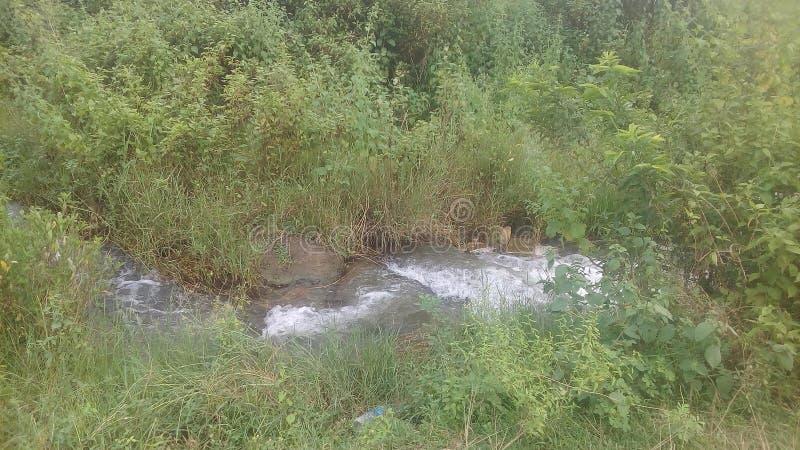 Fluxo do rio em uma maneira estreita fotografia de stock
