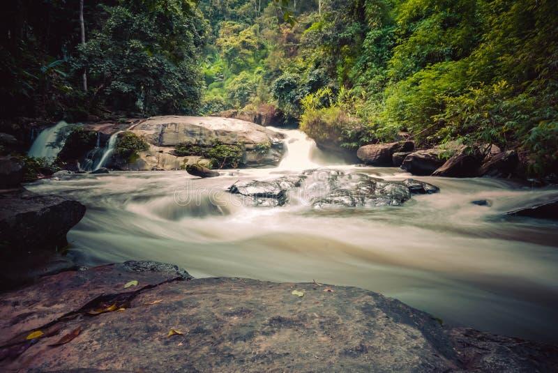 Fluxo do rio no parque nacional de Doi Inthanon, Chiang Mai, Tailândia imagens de stock royalty free