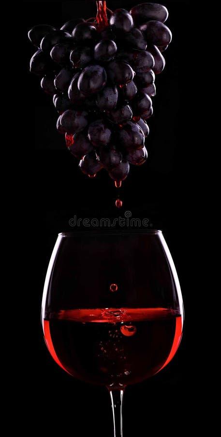 Fluxo do vinho tinto de um conjunto de uvas ao vidro do vinho Blac imagem de stock
