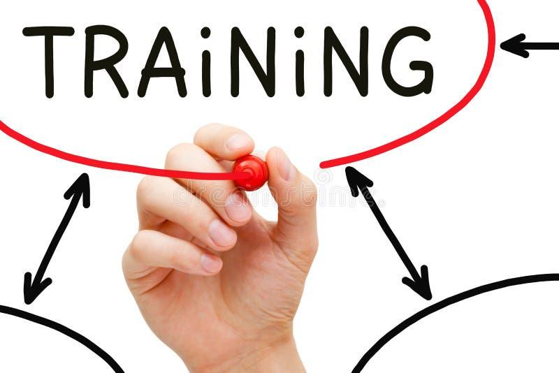 Fluxograma do treinamento imagem de stock