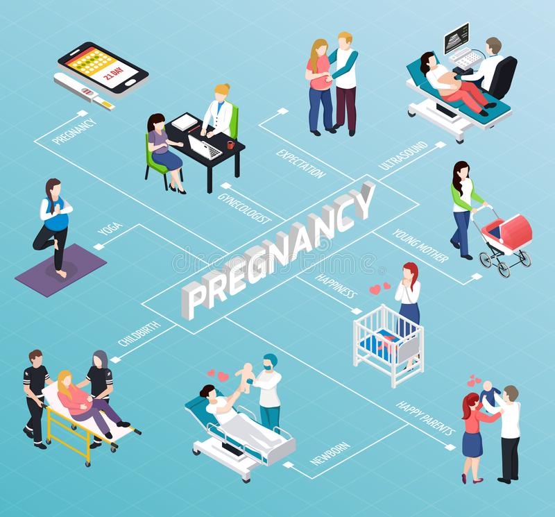Fluxograma isométrico da gravidez ilustração stock