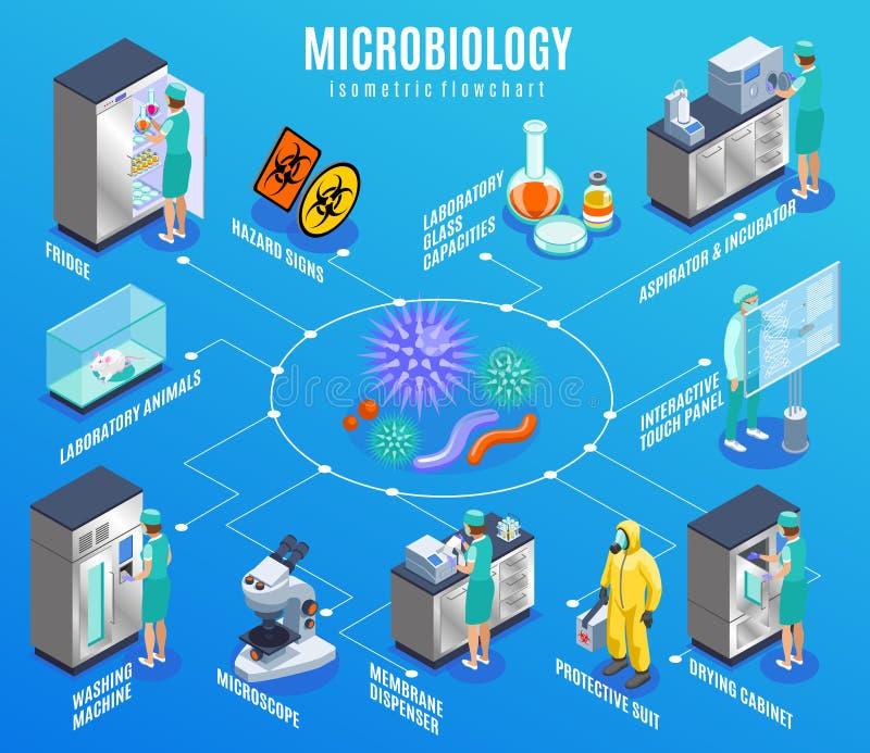 Fluxograma isométrico da microbiologia ilustração stock
