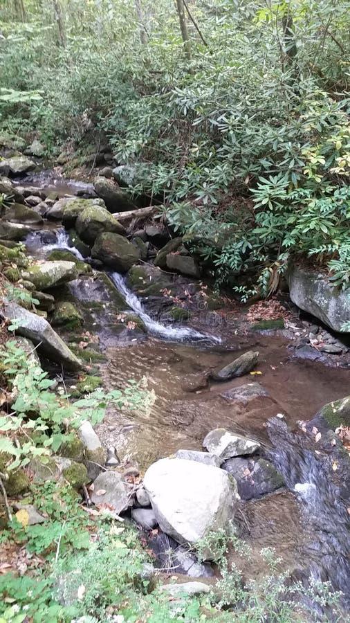 Fluxos da cachoeira livremente imagens de stock royalty free