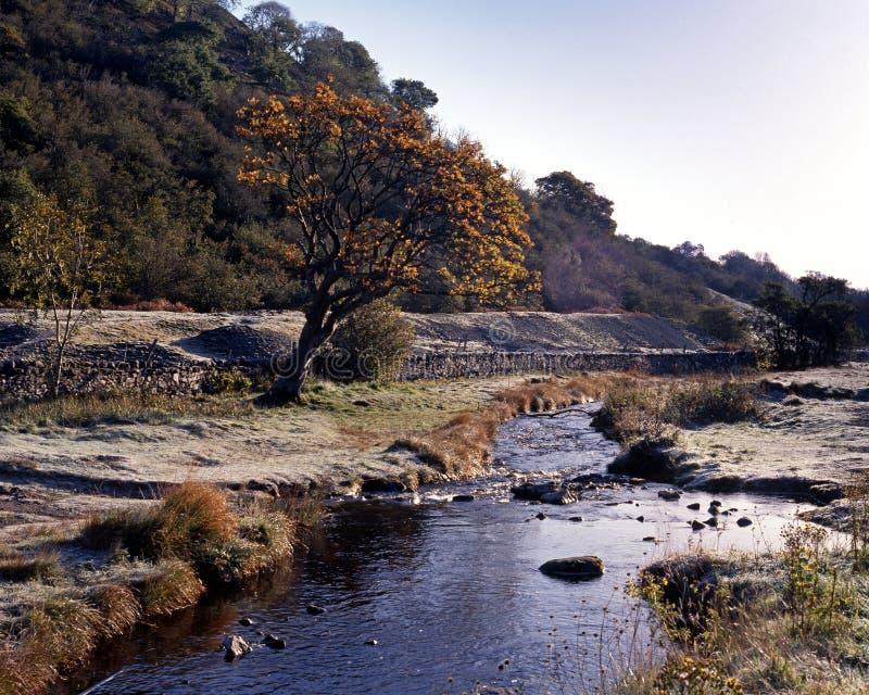 Fluya en la mañana escarchada, Wensleydale, Yorkshire, Reino Unido. imagenes de archivo