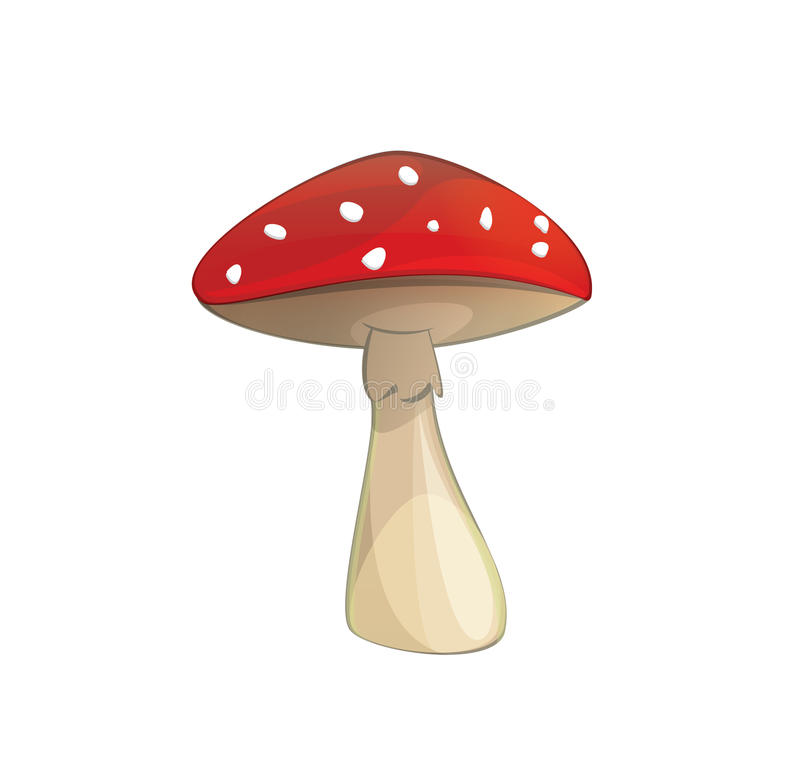 Fly-agaric Poisonous Mushroom With Red Cap Royalty Free Stock Image