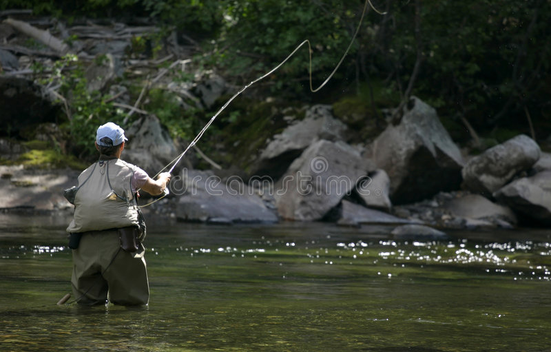 Fly Fish cast in Montana royalty free stock photo