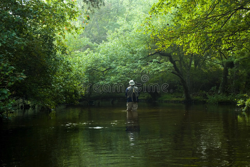Fly fisherman stock images