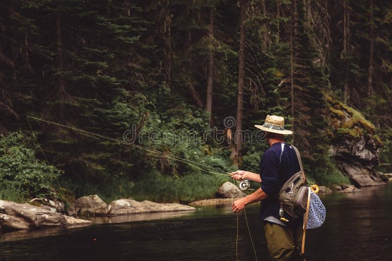 Fly fisherman casting in the mountain stream. stock photos